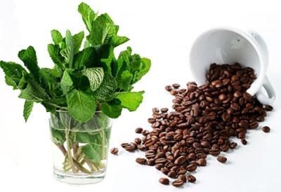 Café a la Menta